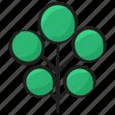 evergreen, forest, forestland, plantation, wild tree icon