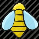 apis mellifera, bee, bumblebee, honeybee, queen bee icon