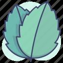 leaf, leaves, nature, plants icon