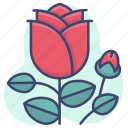 flower, love, nature, rose icon
