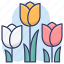 holland, flower, tulips, netherlands icon