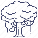 forrest, jungle, nature, tree icon