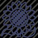 farm, flower, nature, sunflower icon