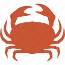 cancer, crab, crustacean, decapod, decapoda, seafood, shell icon