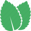 green, leaf, leaves, mentha, mint, peppermint, spearmint icon