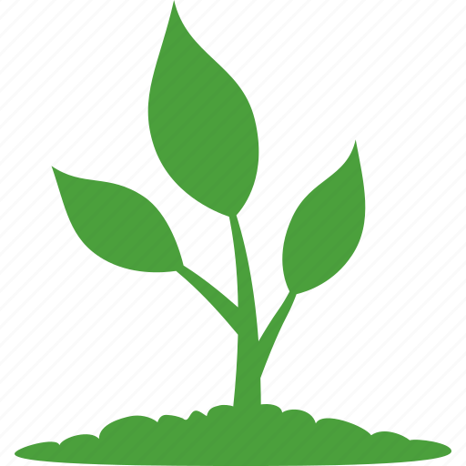 growth, life, natural, nature, organic, plant, startup icon