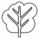 forest, nature, plant, tree icon