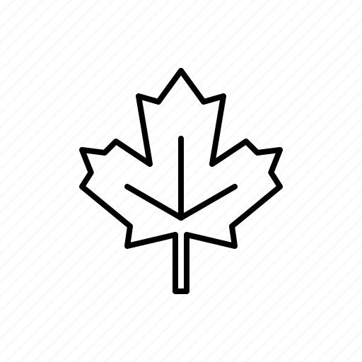 leaf, maple, nature icon