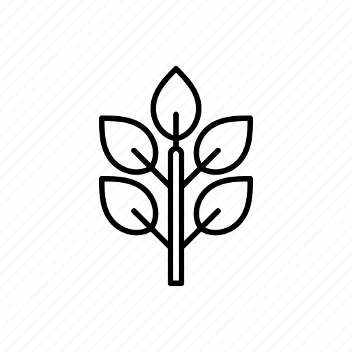 leaf, nature, sapling icon