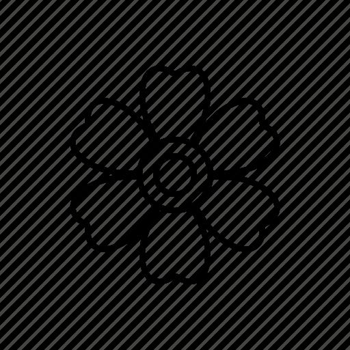 daisy, garden, nature icon