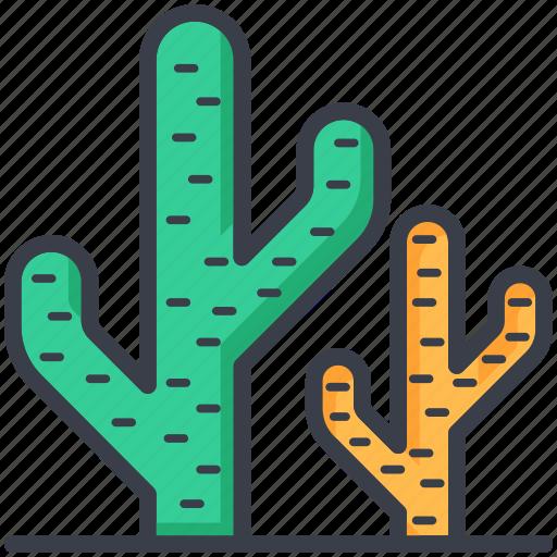 cacti, cactus, cactus plant, desert, desert cactus, plant icon