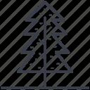 pine tree, tree, evergreen tree, larch tree, fir tree