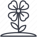 beauty, flower, shamrock, shamrock on stem, shamrock with stem icon