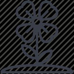 beauty, flower, shamrock, shamrock on stem, shamrock with stem icon