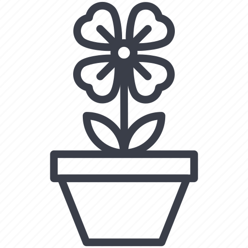 flowering plant, nature beauty, pot plant, shamrock icon