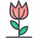 flower, nature, spring flower, tulip, tulip bud icon