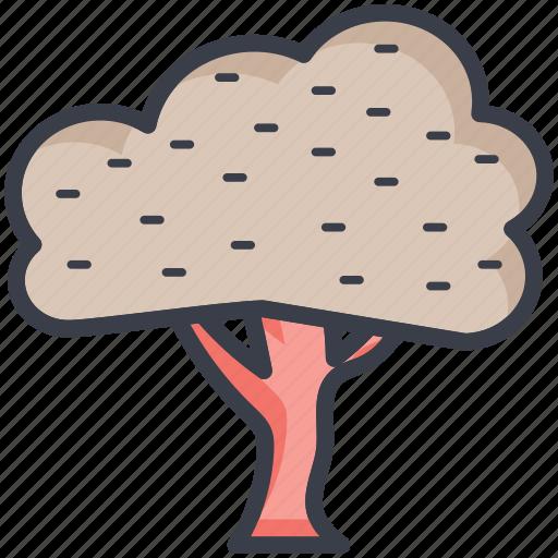ash, oak, shrub, tree, weeping willow icon