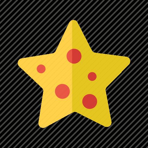 fish, marine, nautical, sea, starfish icon