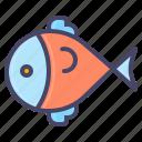 fish, food, marine, sea, swim, seafood