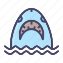 fish, jaws, marine, ocean, sea, shark, whale icon