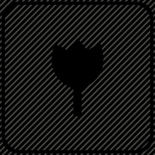 bud, flower, function, key, plant icon