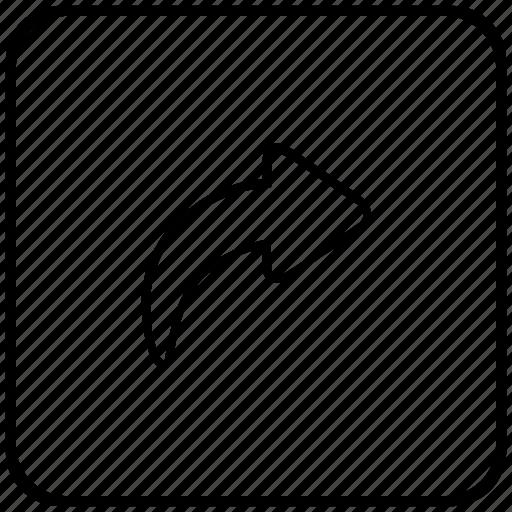 action, arrow, function, history, key, next icon