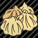 mog, appetizer, cuisine, dumpling, food
