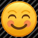 emoji, face, shy, smiley, smiling