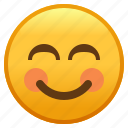 emoji, eyes, face, smiley, smiling, with
