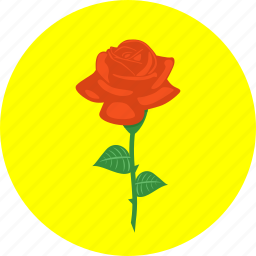 creative, decoration, flower, love, plant, present, rose icon