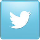 bird, new, square, twitter icon
