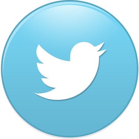 bird, new, twitter icon