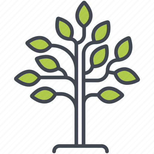 ecology, environment, growth, nature, plant, reforestation, tree icon