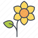 bloom, blossom, ecology, environment, flower, nature, plant icon