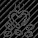 roasted, cocoa, bean, heart, hot, grain, love
