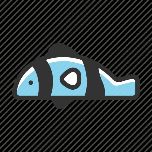 anemonefish, aquarium, clownfish, fish, ocean, sea, tropical icon
