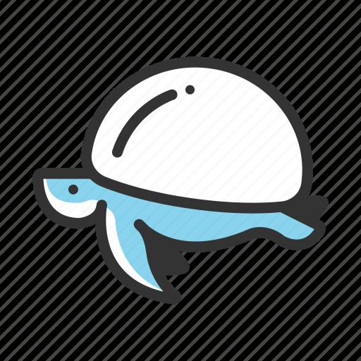 animal, ocean, sea, sea turtle, shell, turtle, underwater icon
