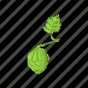 brewery, cartoon, cone, design, green, hops, plant