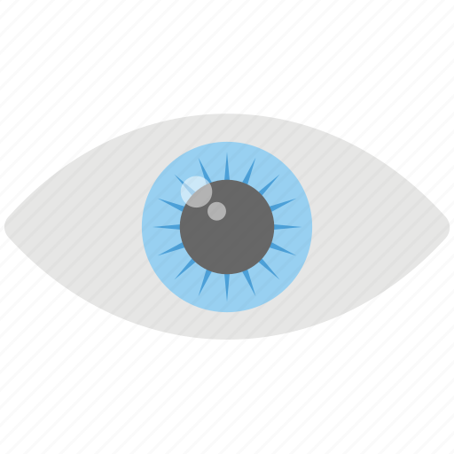 eye monitoring, human eye, look, observing, watch icon