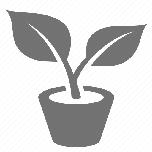 eco, environment, flower, green, leaf, plant, potted icon