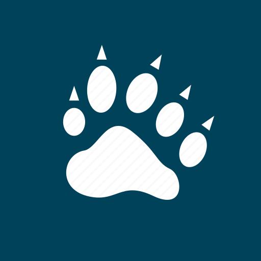 cat, cheetah, lyon, paw, tiger icon