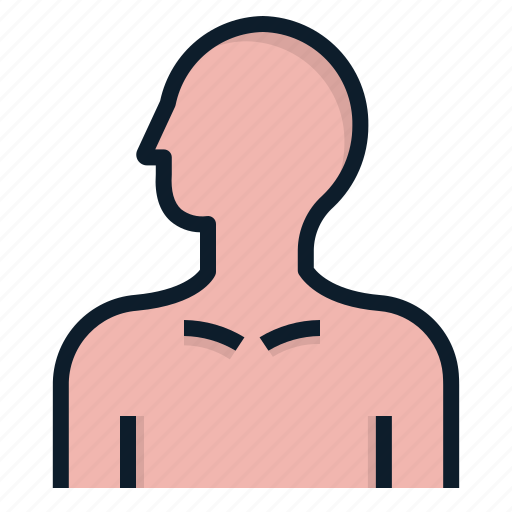 Anatomy, body, human, man icon - Download on Iconfinder