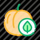 food, fruit, leaf, peach