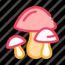 mushroom, nature, pumpkin