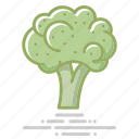 broccoli, cabbage, flower, food, groceries, healthy eating, vegetable icon