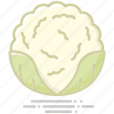 cabbage, cauliflower, food, groceries, healthy eating, vegetable icon