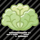 food, groceries, healthy eating, leaf vegetable, lettuce, vegetable icon