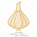 bulb, food, garlic, groceries, healthy eating, onion, vegetable icon