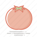 food, fruit, groceries, healthy eating, tomato, vegetable icon