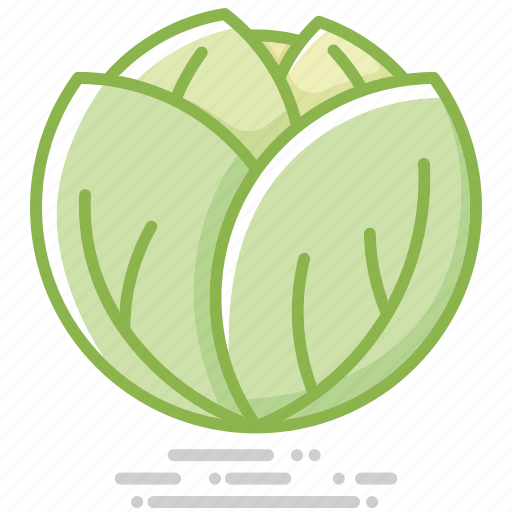 cabbage, food, groceries, healthy eating, vegetable icon